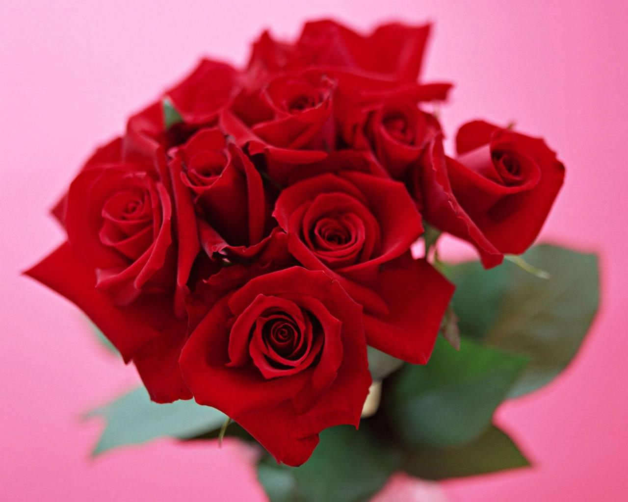 Sfondi amore fiore